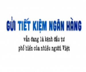 chuyen-gia-tai-chinh-ca-nhan-lam-minh-chanh-ban-nen-dau-tu-dai-han-vao-ngan-hang-chung-chi-quy-chung-khoan-tot-va-khong-nen-dung-den-forex